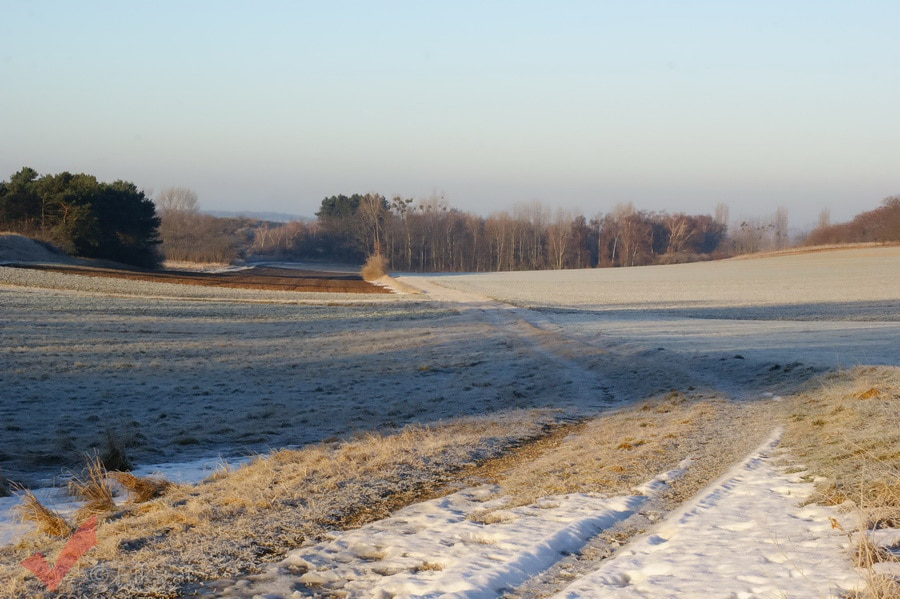 breitensee-winter_005