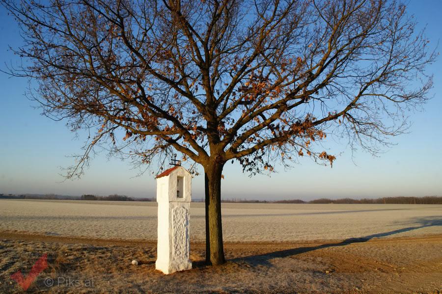 breitensee-winter_001