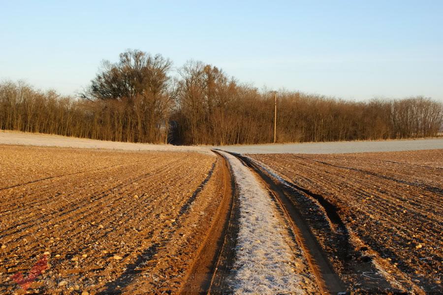 breitensee-winter_004