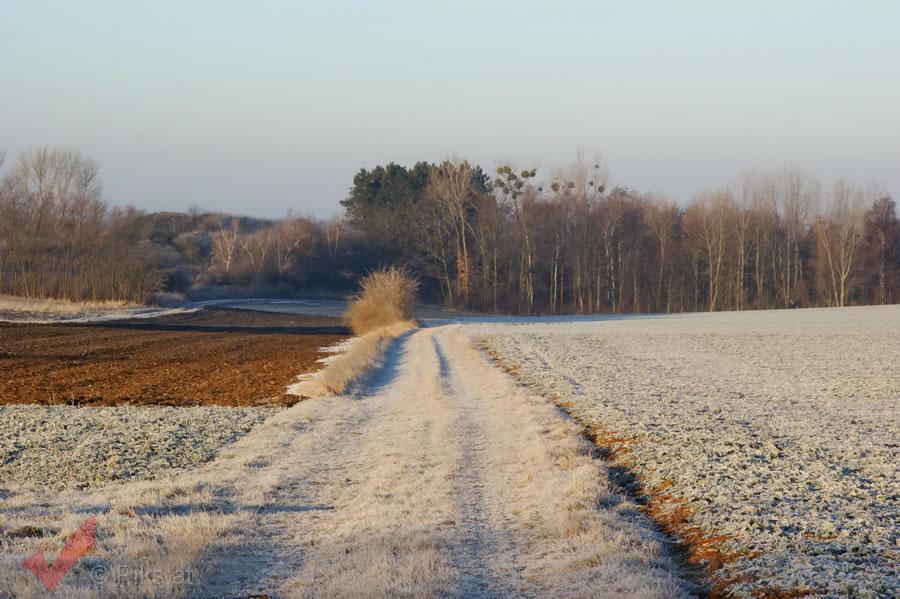 breitensee-winter_006