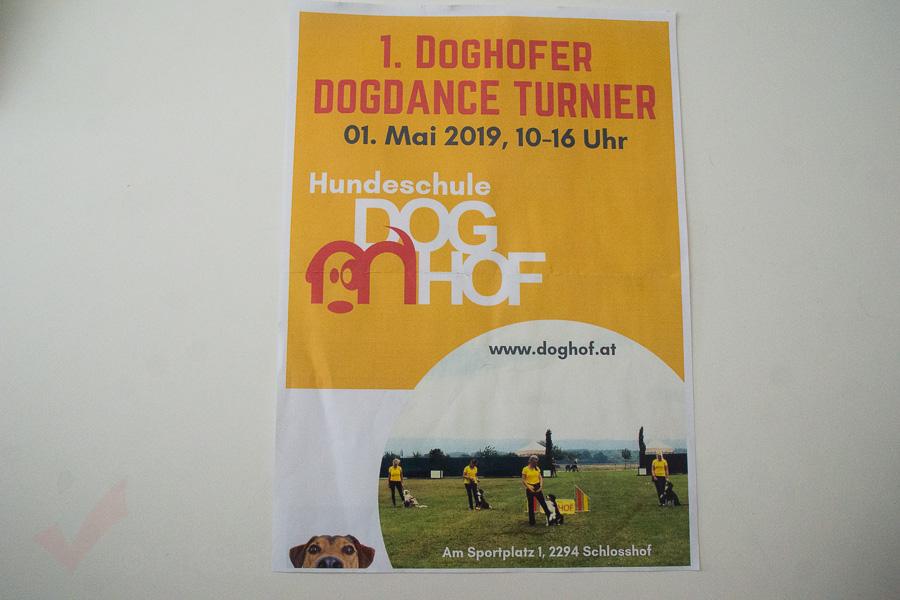 Dogdance-01