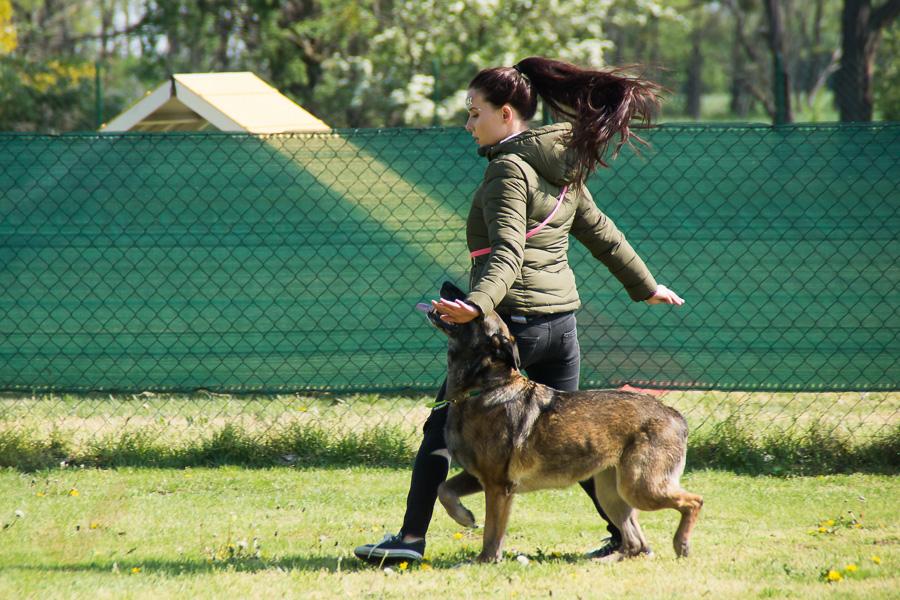 Dogdance-02