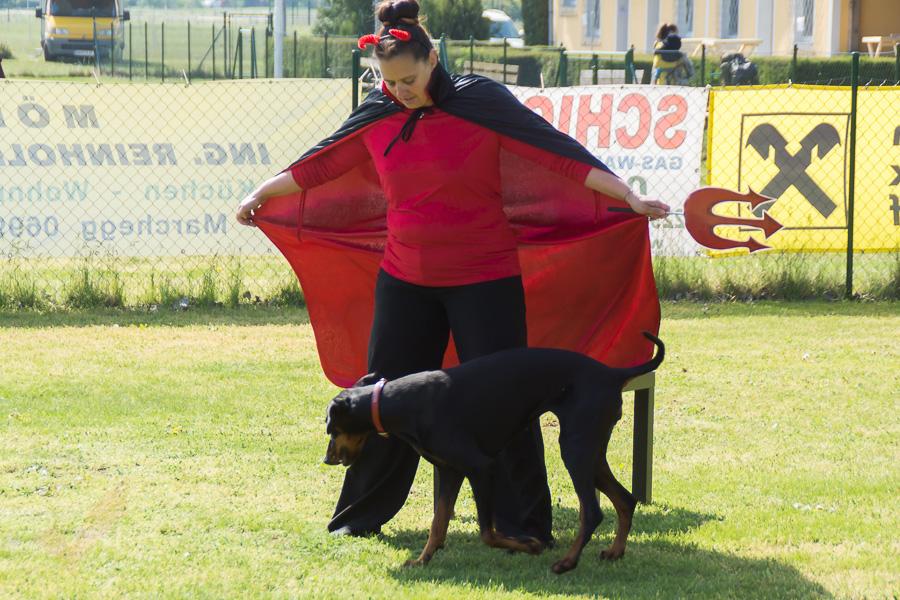 Dogdance-12