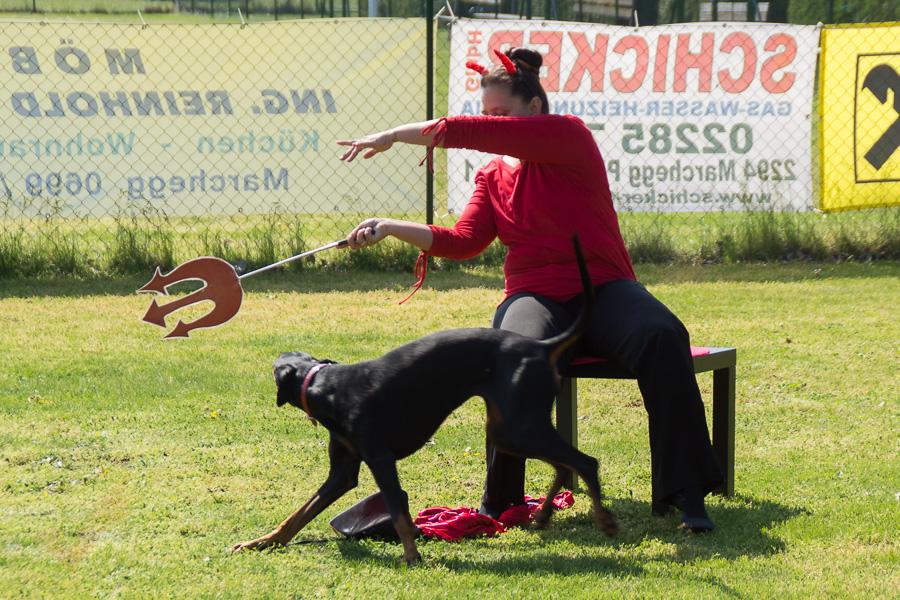 Dogdance-13