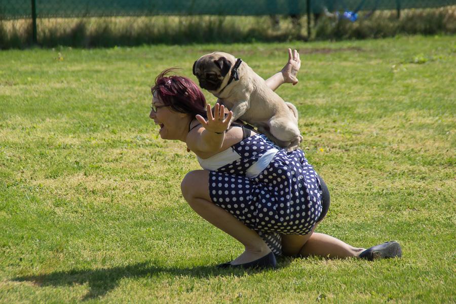 Dogdance-20