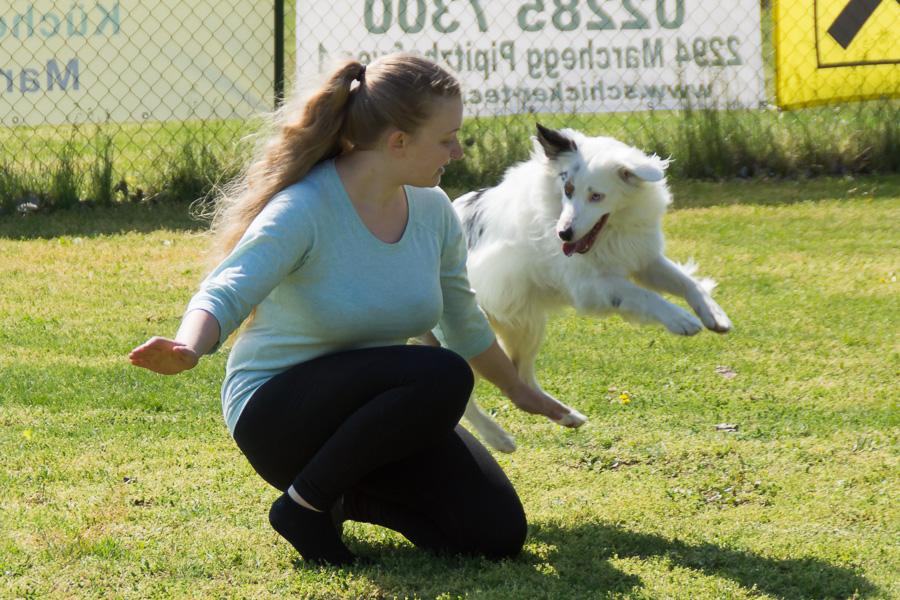 Dogdance-28