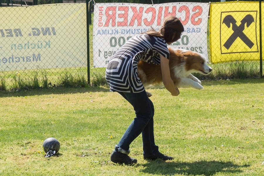 Dogdance-38