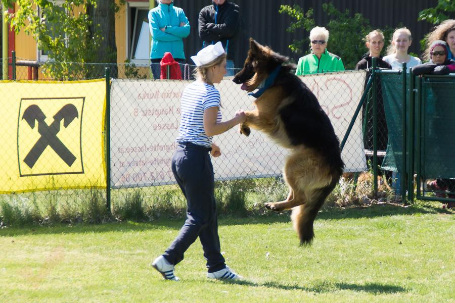 Dogdance-46