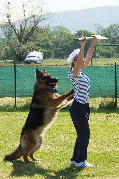 Dogdance-48