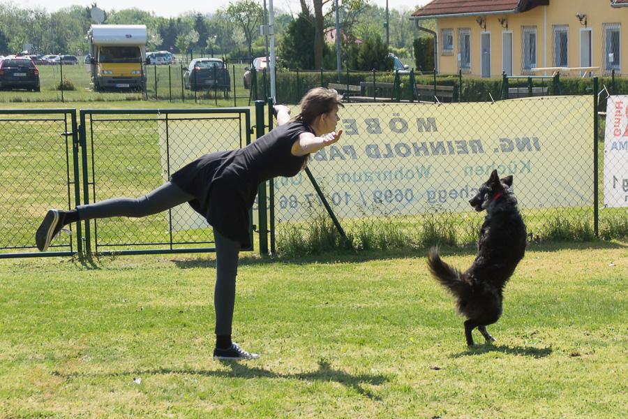 Dogdance-52