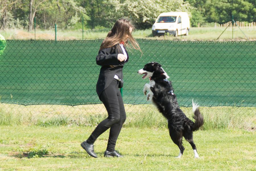 Dogdance-60