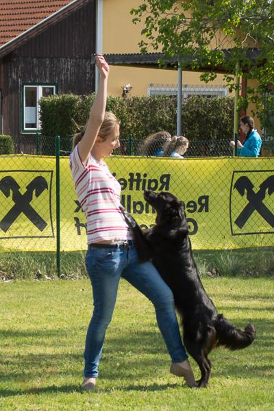 Dogdance-65