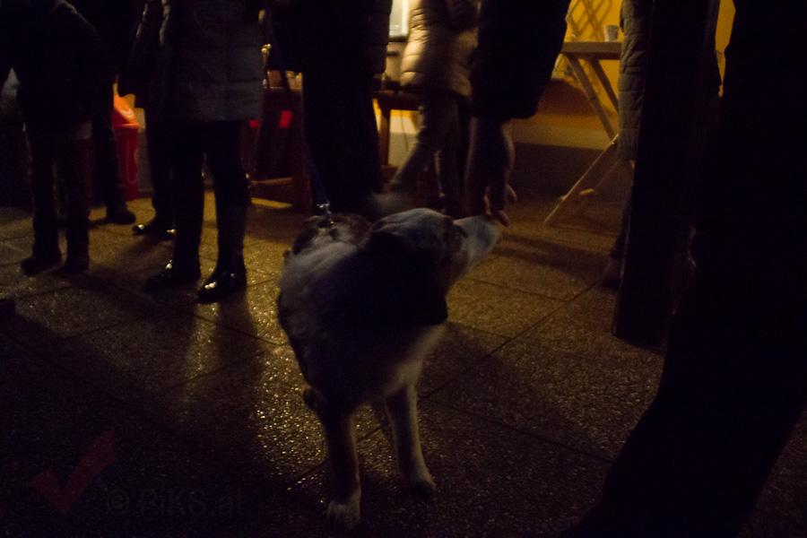 Doghof Punsch 30