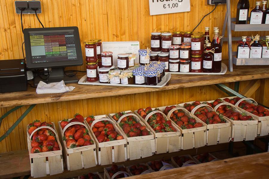 6-Erdbeerfest-004