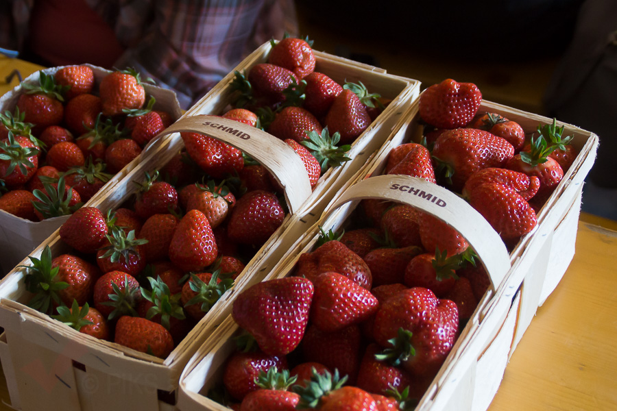 6-Erdbeerfest-152