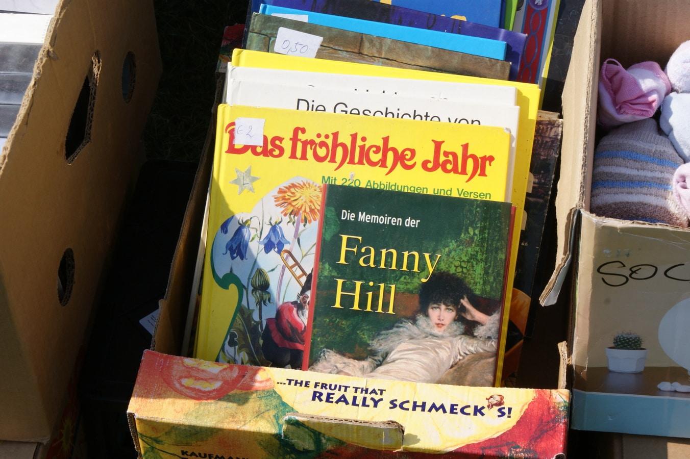 Flohmarkt-in-Breitensee-09