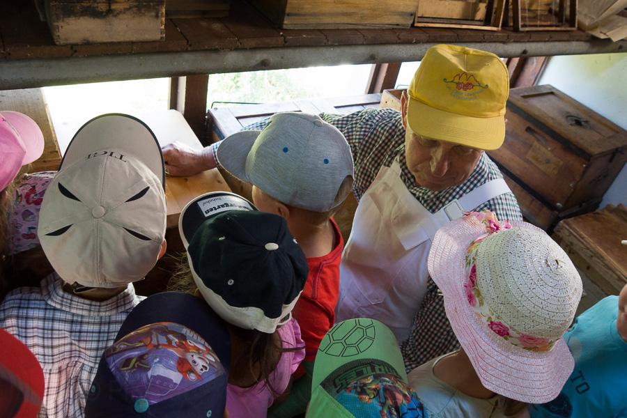 Bienen Kindergarten 09