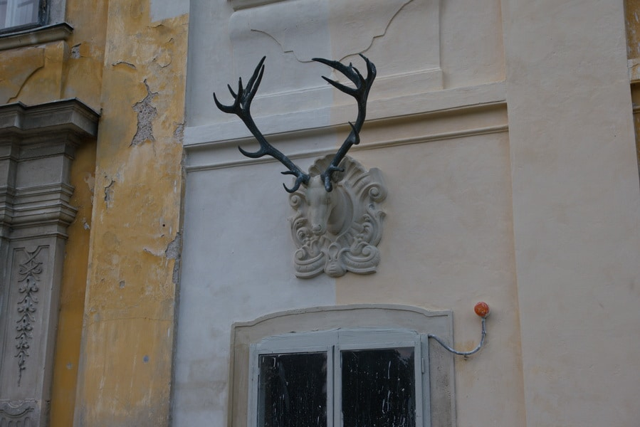 Schloss-Marchegg-13