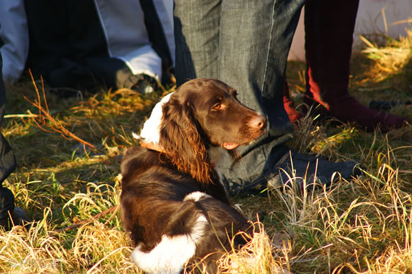 breitensee_silvester2009_64