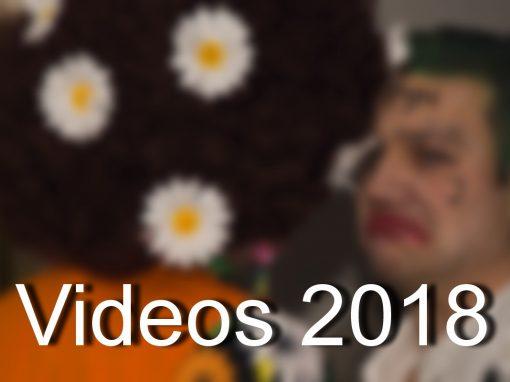 Gschnas Video 2018
