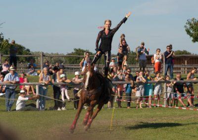 Pferdefest in Schlosshof