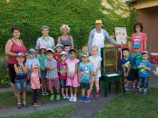 Kindergarten Marchegg Bahnhof besucht die Bienen
