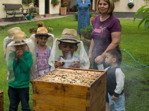 Kindergarten Breitensee – Ausflug zu den Bienen