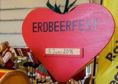 Familie Schmid Erdbeerfest 2016