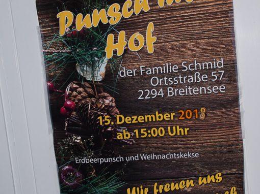 Weihnachtskekse Swing.Breitensee Im Marchfeld Bilder Von Veranstaltungen In Breitensee